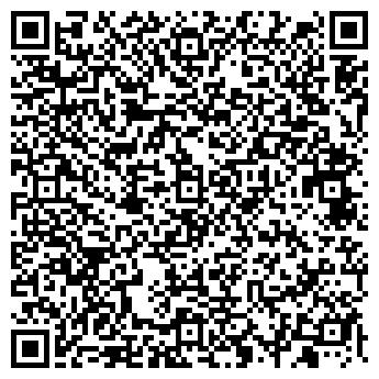 QR-код с контактной информацией организации Blitz Group, ФЛП