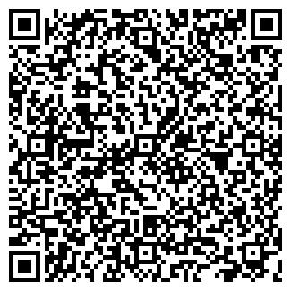 QR-код с контактной информацией организации Панина,ЧП