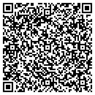 QR-код с контактной информацией организации ДМ стиль, ООО
