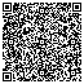 QR-код с контактной информацией организации Technic Destroy (Техник Дестрой), ТОО