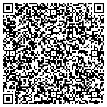 QR-код с контактной информацией организации Терешко Д. А. (Belstrahovka), ИП