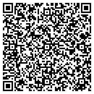 QR-код с контактной информацией организации Кайнар, ИП