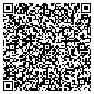 QR-код с контактной информацией организации Чинзано, Бар