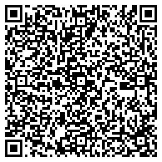 QR-код с контактной информацией организации Шегай, ИП