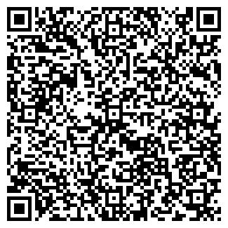 QR-код с контактной информацией организации Балу, ИП