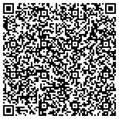 QR-код с контактной информацией организации Dream Star Production(Дрим Стар Продакшн), ИП
