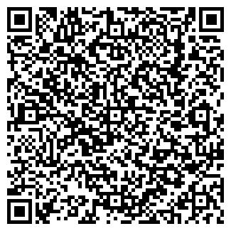 QR-код с контактной информацией организации Беларус, ИП