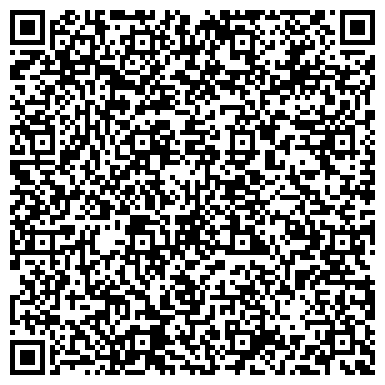 QR-код с контактной информацией организации Skytek systems (Скайтек системс), ТОО