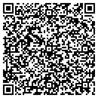QR-код с контактной информацией организации Styling-Group Profi Custom