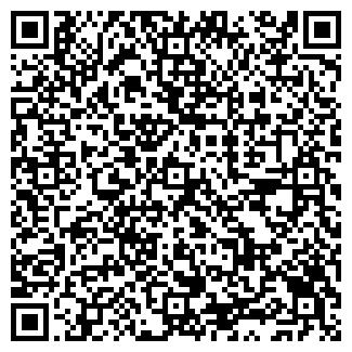 QR-код с контактной информацией организации Карвинг, ЧП