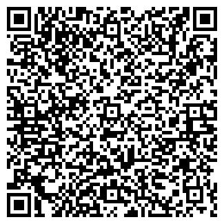 QR-код с контактной информацией организации Иконодел, ЧП