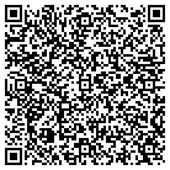 QR-код с контактной информацией организации LION KING