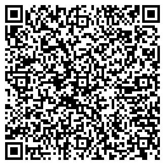 QR-код с контактной информацией организации ИП Елена