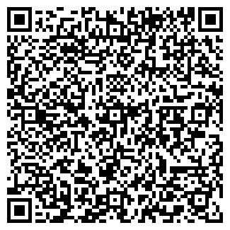 QR-код с контактной информацией организации Паладин , ООО