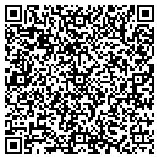 QR-код с контактной информацией организации Виллабуд, ЧП
