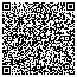 QR-код с контактной информацией организации Orlan A.S.S, ИП