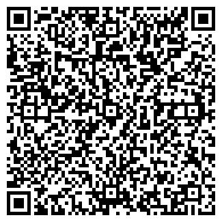 QR-код с контактной информацией организации Зебра, ИП