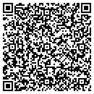 QR-код с контактной информацией организации ИП Дубен В. В.