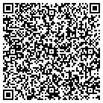QR-код с контактной информацией организации ИП Борисов И.И.