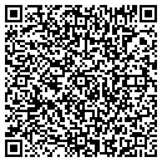 QR-код с контактной информацией организации VIP HOUSE