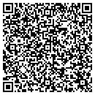 QR-код с контактной информацией организации ип tagashon BTS