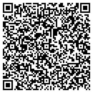 QR-код с контактной информацией организации Толочко, ЧП
