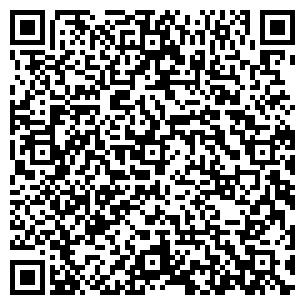 QR-код с контактной информацией организации Ариста КР, ООО