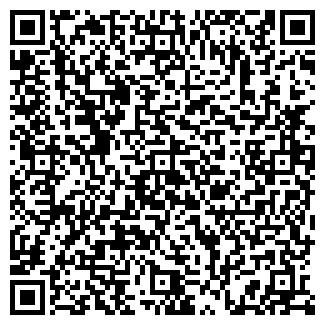 QR-код с контактной информацией организации MLK