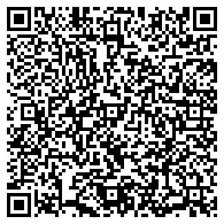 QR-код с контактной информацией организации Инсам, ООО (Інсам)
