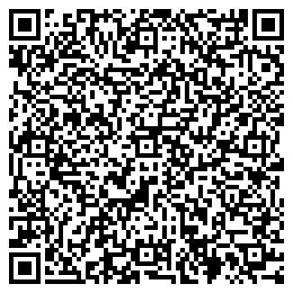 QR-код с контактной информацией организации Губко, ИП