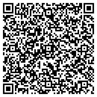 QR-код с контактной информацией организации Vizit (Визит), ИП