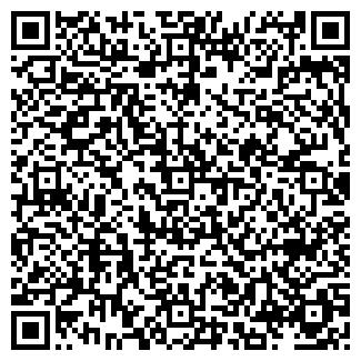 QR-код с контактной информацией организации Игорь, ИП