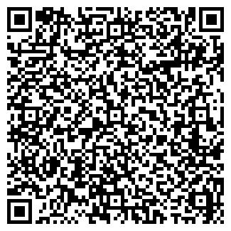 QR-код с контактной информацией организации Пралиева, ИП
