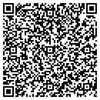 QR-код с контактной информацией организации ИП Чаглей Н. Г