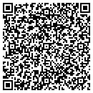 QR-код с контактной информацией организации ИП Chocolux, Частное предприятие