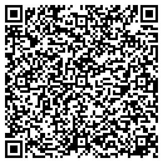 QR-код с контактной информацией организации BIS studio