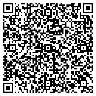 QR-код с контактной информацией организации VW TRANSPORT