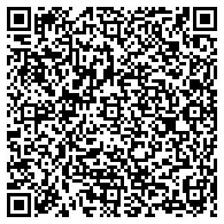 QR-код с контактной информацией организации ИП Алибай