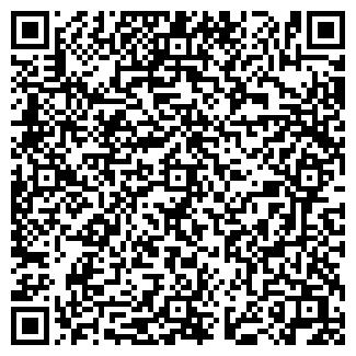 QR-код с контактной информацией организации Busservice