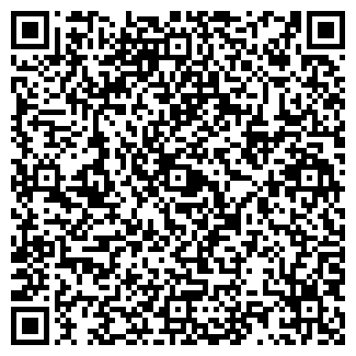"""QR-код с контактной информацией организации ИП """"SOLOIST"""""""