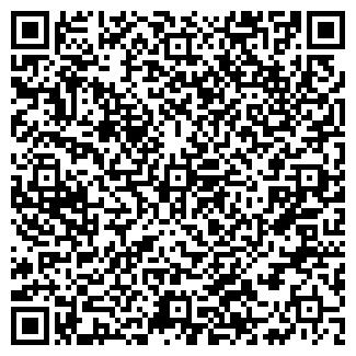 QR-код с контактной информацией организации Solemare, ООО