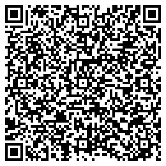 QR-код с контактной информацией организации Поедем, ИП
