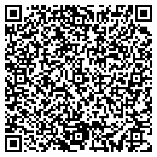 QR-код с контактной информацией организации чп пилесос