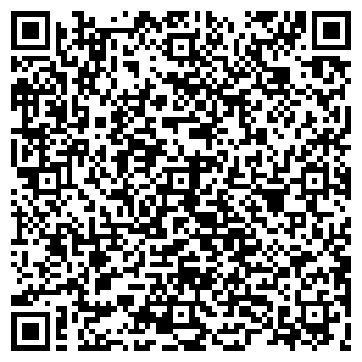 QR-код с контактной информацией организации Rixos, ИП