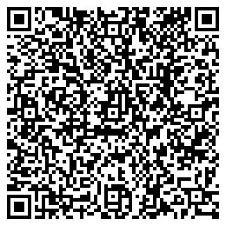 QR-код с контактной информацией организации Ваол Лтд,ТОО