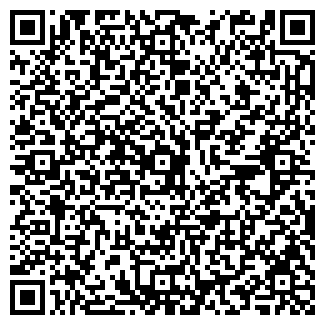 QR-код с контактной информацией организации ООО Visa Planet