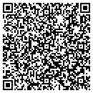 QR-код с контактной информацией организации Светлое небо