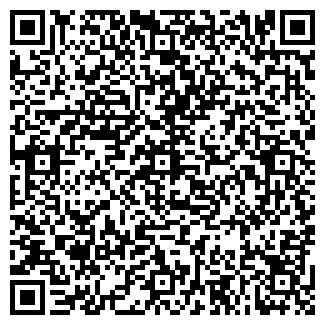 QR-код с контактной информацией организации Алькенова, ИП