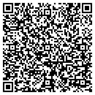 QR-код с контактной информацией организации Профи-Zone