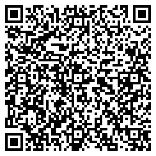 QR-код с контактной информацией организации ИП «Аэлита»